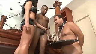 cuckold black boy